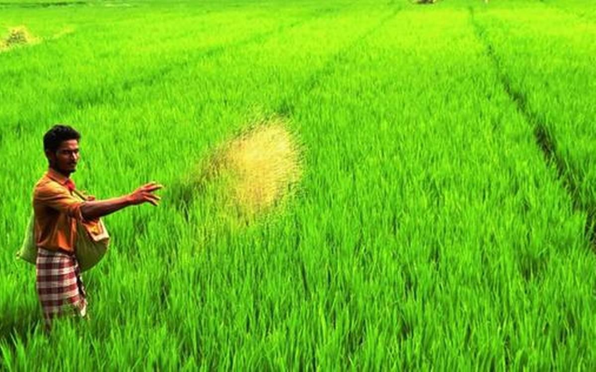 രാജ്യത്തെ ഏറ്റവും സമ്പന്നരായ കര്ഷകര് മേഘാലയയിലെന്ന് സര്വെ റിപ്പോര്ട്ട്
