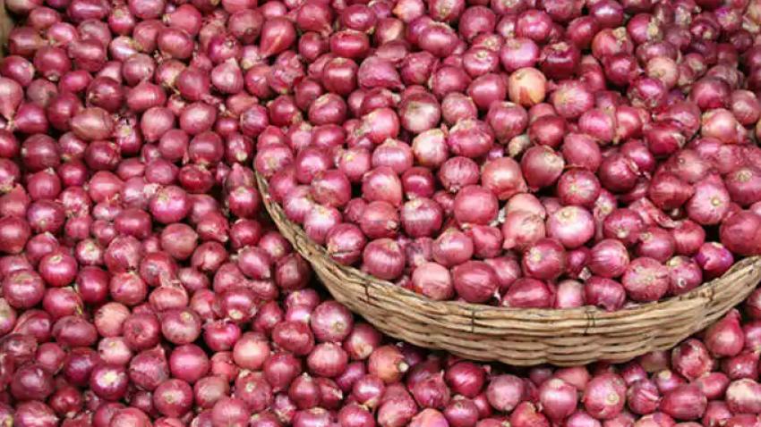 25 ടണ് സവാളയുമായി ഡ്രൈവര് മുങ്ങി; പരാതിയുമായി കൊച്ചിയിലെ മൊത്തക്കച്ചവടക്കാരന്